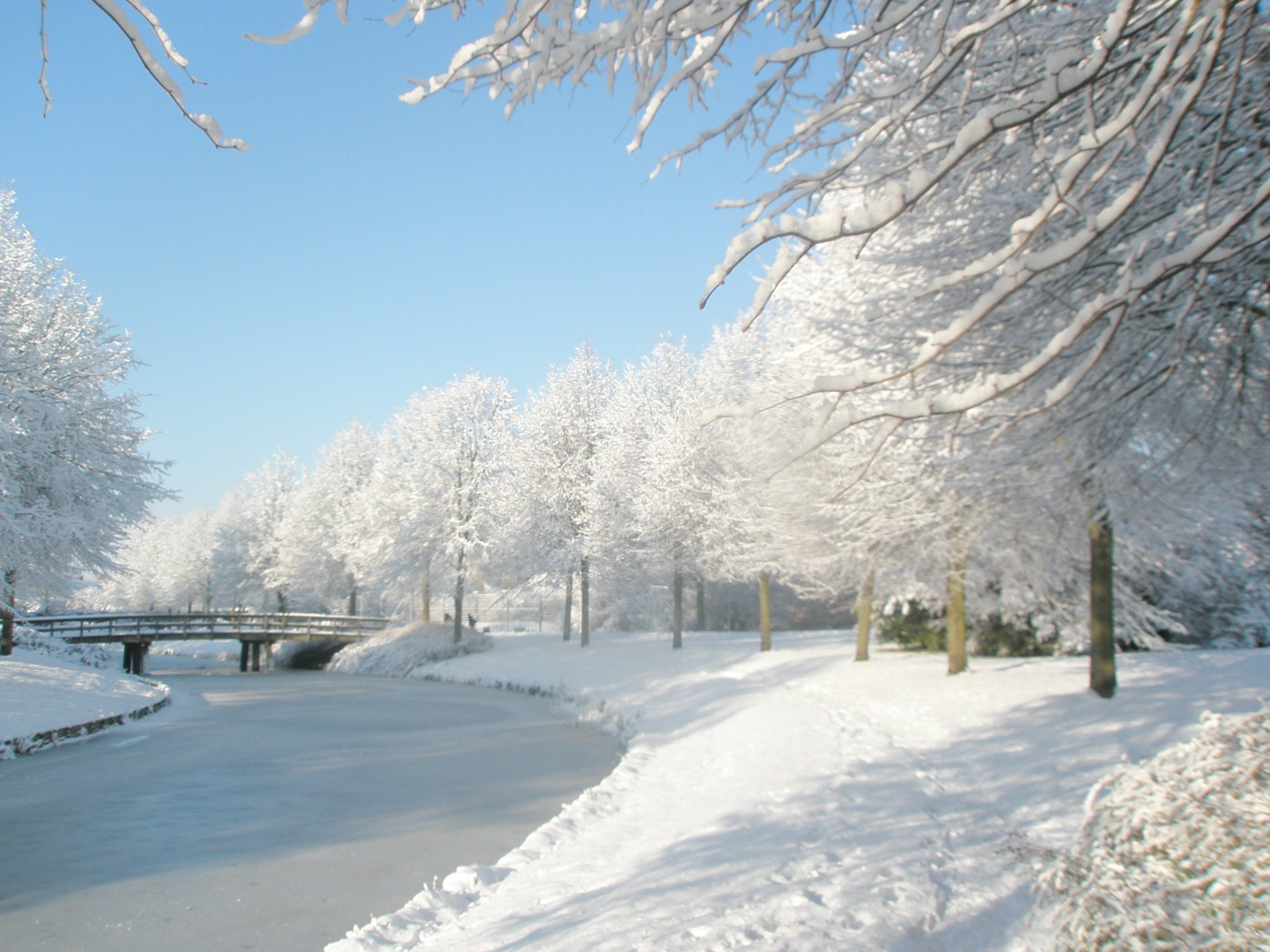 Mooie winterfoto s in hoorn 9 hoorngids de nieuwsbron voor hoorn zwaag en blokker - Foto van de eetkamer ...