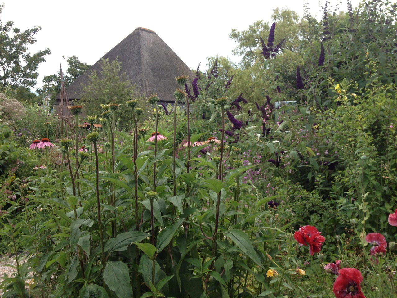 Levende tuinen dag voor meer natuur in de tuin hoorngids de nieuwsbron voor hoorn zwaag en - Outs idee open voor levende ...
