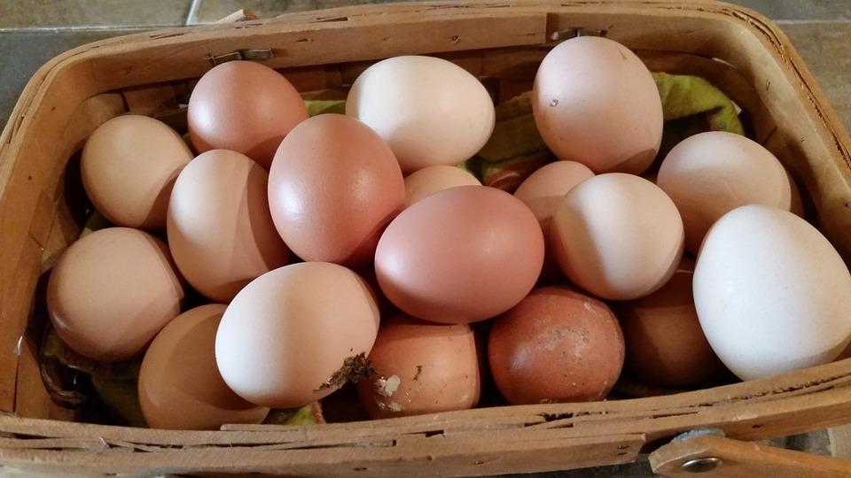 potentie eieren